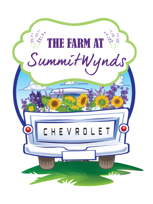 Lavender Farm Fest & Sunflower Farm Fest | Holden MA